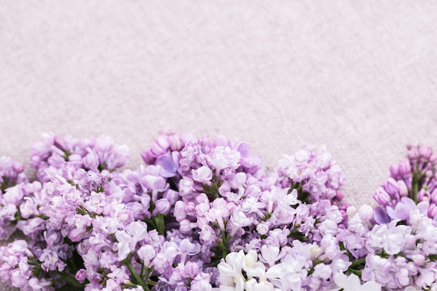 Decorative floral border from lilac with copy space. Premium Photo