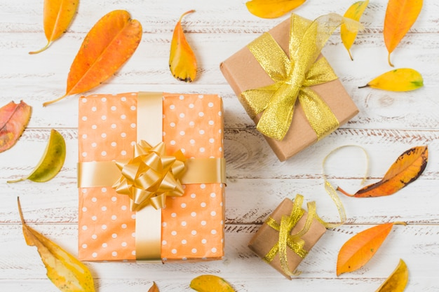 Decorative gift boxes surrounded with orange leaves on white table Free Photo