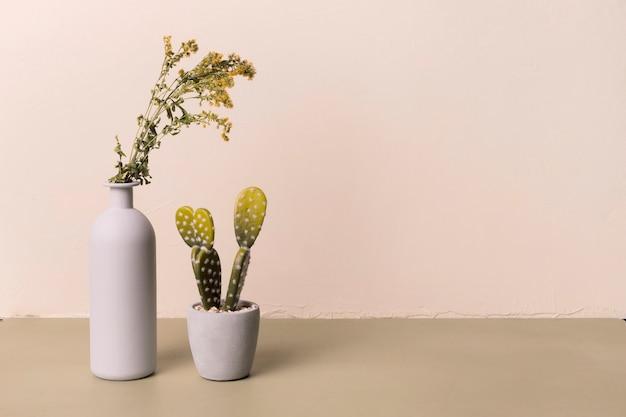 Decorative plant inside minimal vase Free Photo