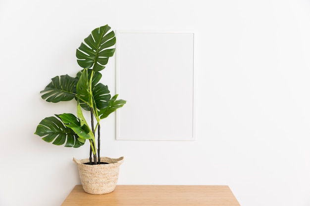 Decorative plant with empty frame Free Photo