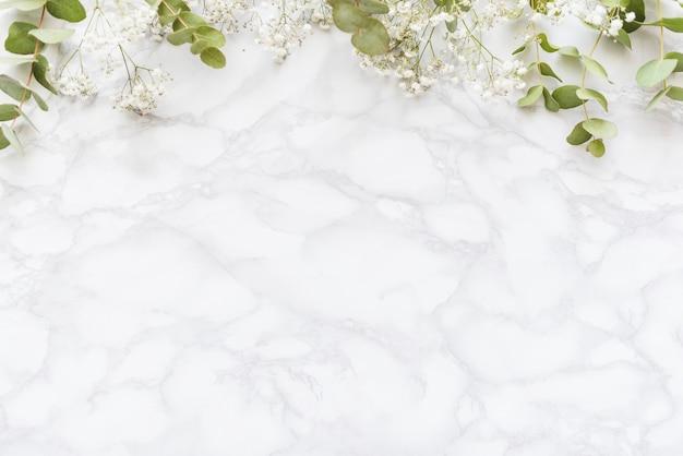 背景に装飾的な植物 Premium写真