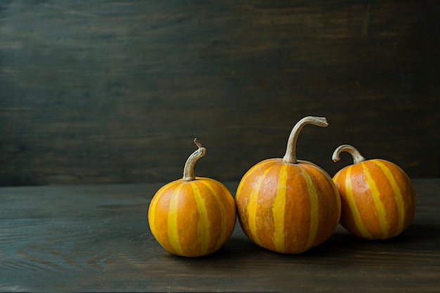 Decorative pumpkin Premium Photo