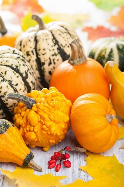 Декоративные тыквы и осенние листья на хэллоуин Premium Фотографии