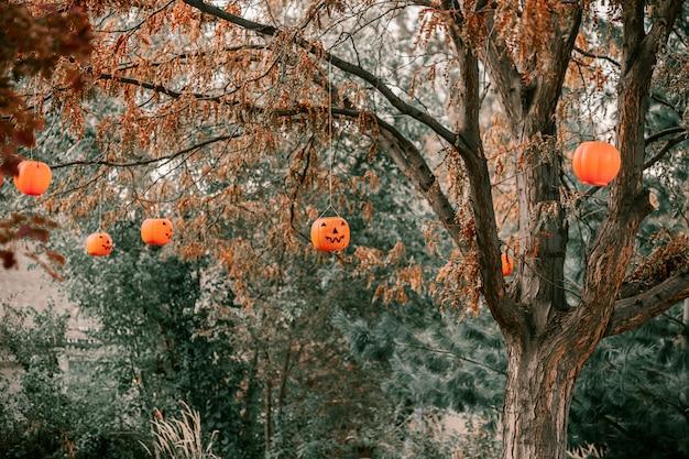 Decorative pumpkins hanging from trees Premium Photo
