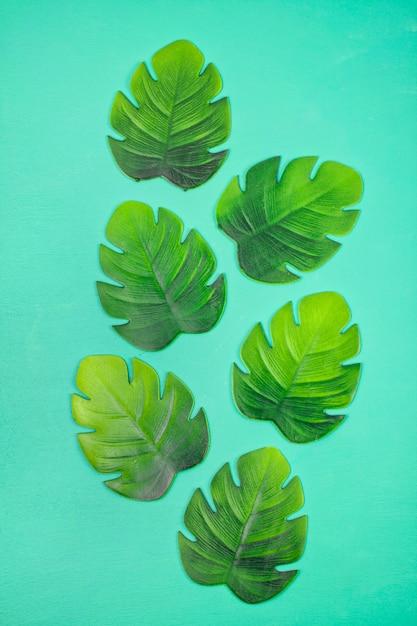 Decorative tropical leaves top view Premium Photo