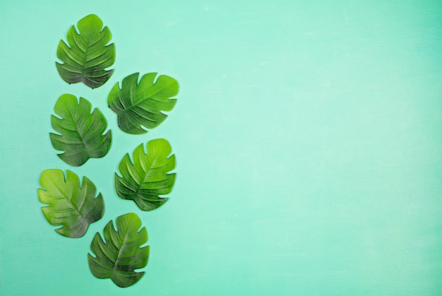 Decorative tropical leaves top view Premium Photo