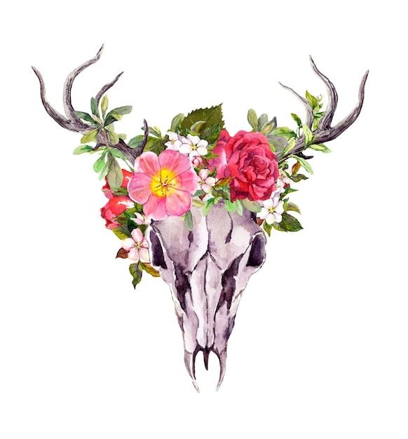 Deer animal skull with flowers in boho style. watercolor Premium Photo