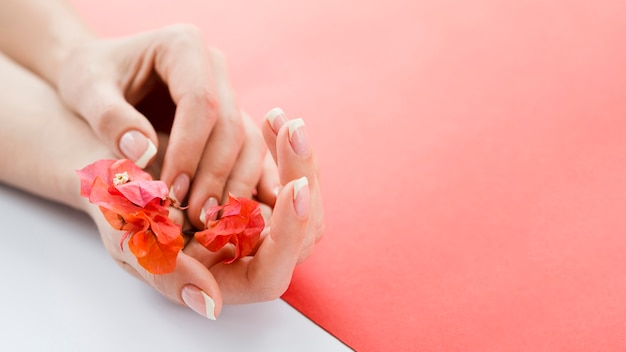 Delicate hands holding red flowers with copyspace Free Photo