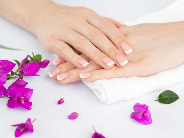 Delicate woman's manicured hands with flowers Free Photo