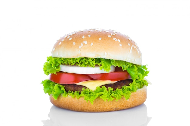 Delicious cheeseburger Free Photo
