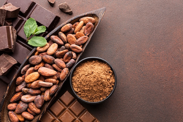 Delicious cocoa beans copy space Free Photo