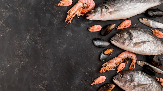 Delicious fresh fish and shrimp Premium Photo
