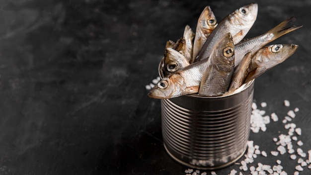 Delicious fresh tuna fish Free Photo