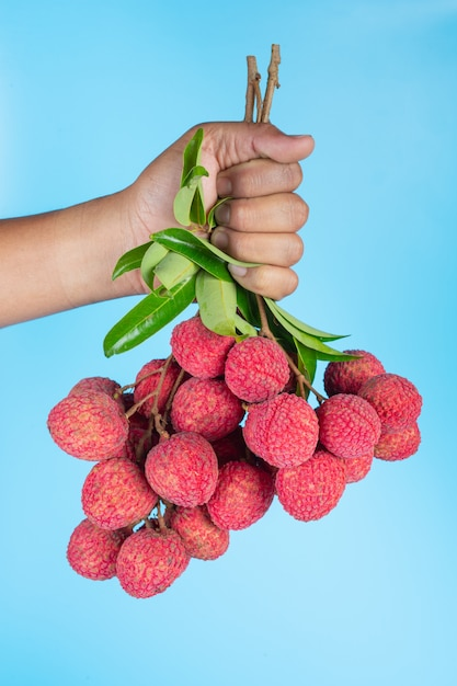 Delicious lychee fruit Free Photo