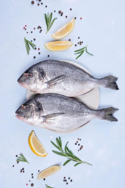 맛있는 도미 생선 평평한 누워 프리미엄 사진