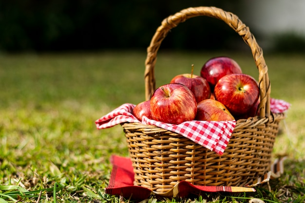 Delicious red apples in straw basket Free Photo