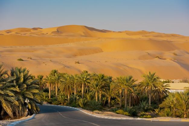 アラブ首長国連邦、アブダビのリワオアシスの砂漠の砂丘 Premium写真