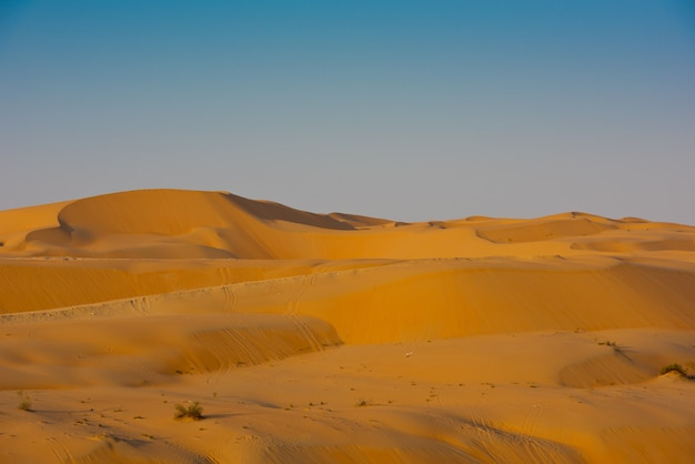 Desert dunes in liwa, united arab emirates Premium Photo