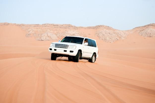 砂漠のサファリ 無料写真