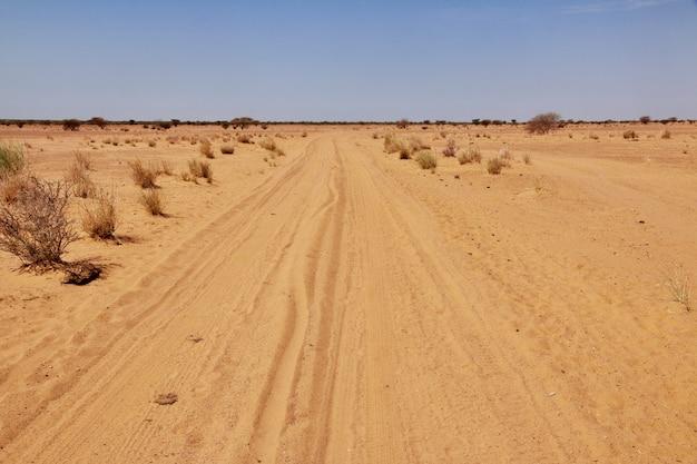 Desert sahara in sudan Premium Photo