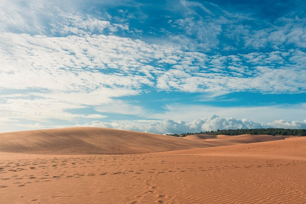 Desert with blue sky Premium Photo