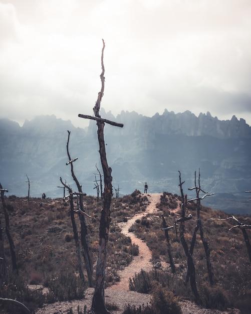 乾いた草、山、木で覆われた人けのない場所が丘の上に立っている人と交差する 無料写真