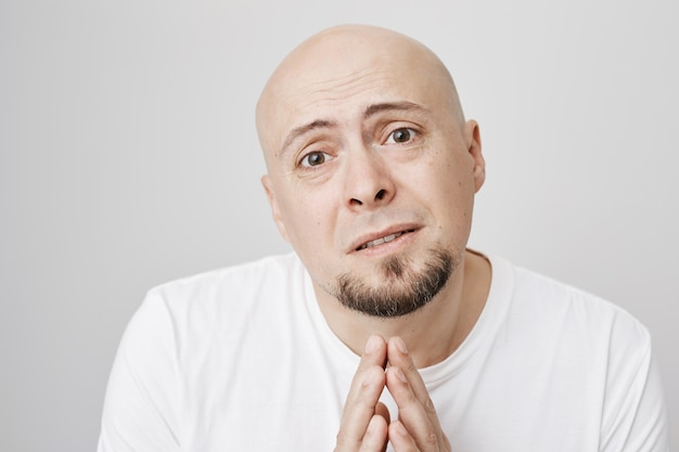 Desperate bald man pleading, asking apology Free Photo