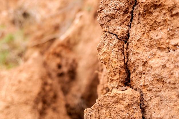 Деталь и текстура земли склона с трещинами. Premium Фотографии