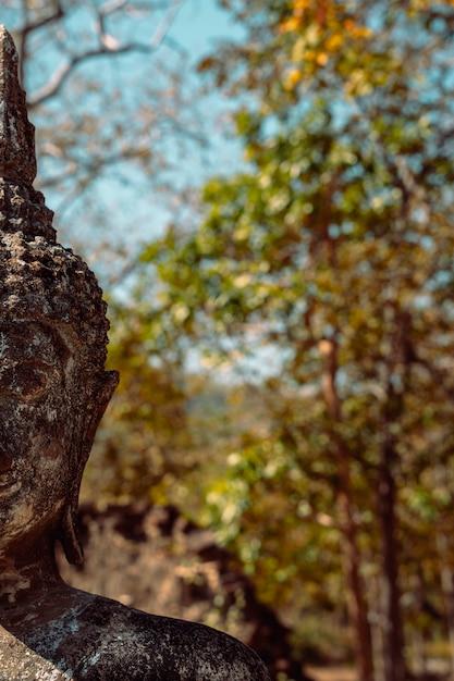 Деталь старого портрета скульптуры будды с зеленым космосом экземпляра природы. Premium Фотографии