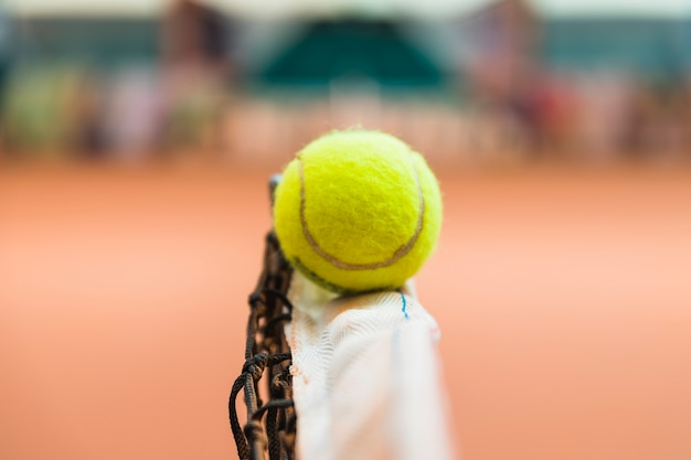 Detail of tennis ball on net Free Photo