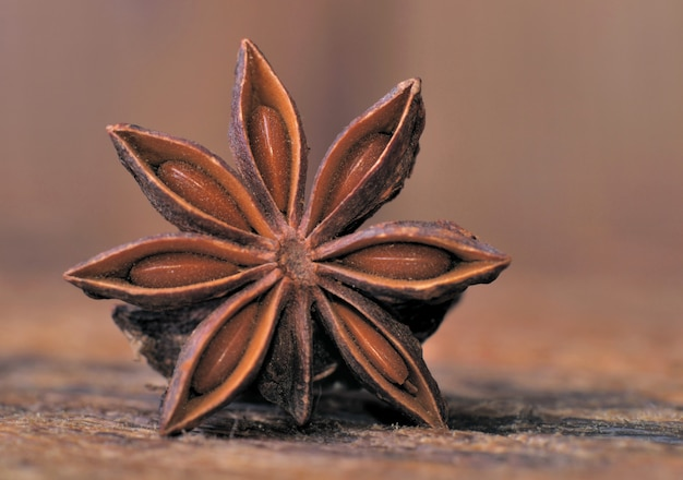 Details of a star anise Premium Photo