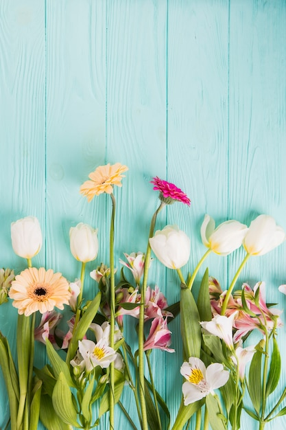 Different bright flowers scattered on table Free Photo