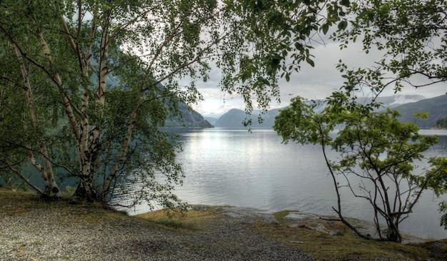 Different colors of a norwegian landscape Premium Photo