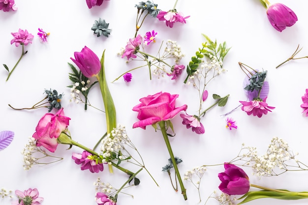 Different flowers scattered on light table Free Photo