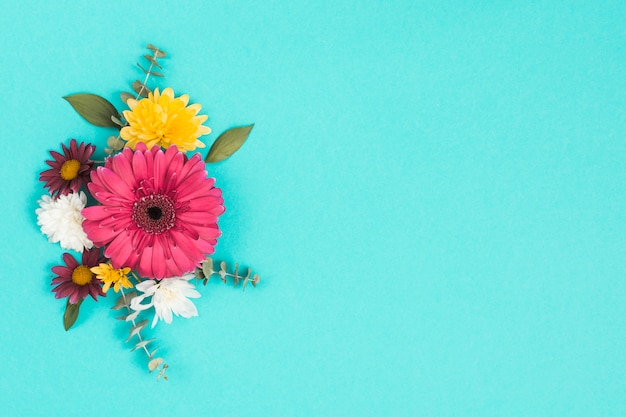 Different flowers with leaves on blue table Free Photo