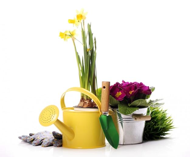 Diverse cose da giardinaggio Foto Gratuite