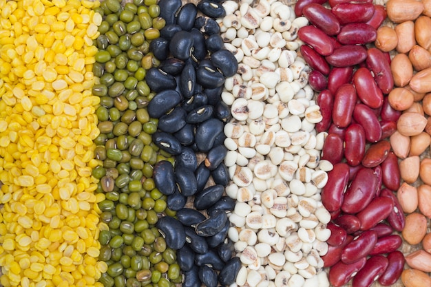 Different kinds of bean seeds Premium Photo
