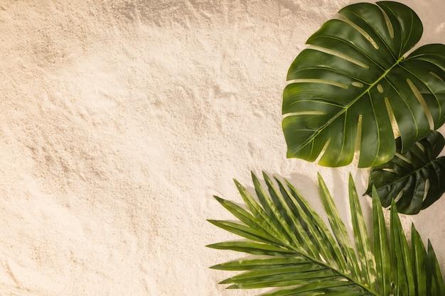 Разные листья на песке Premium Фотографии