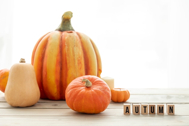 Different pumpkins on wooden table Free Photo