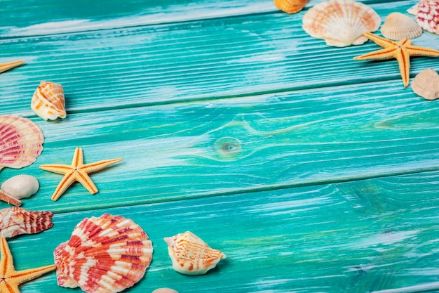 Different sea shells on color wooden Premium Photo