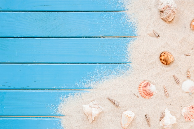 Different sea shells with sand on table Free Photo