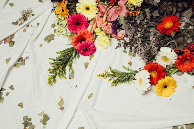 Different type of colorful gerbera flowers and leaves on white cloth Free Photo