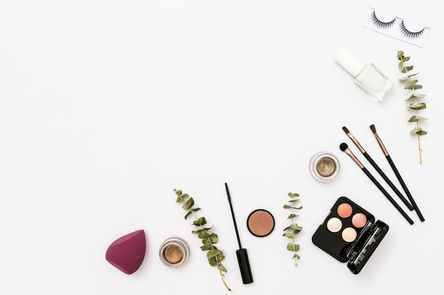 Different type of cosmetics palette with eyeshadow; nail polish bottle; eyelashes and brushes with twig on white backdrop Free Photo