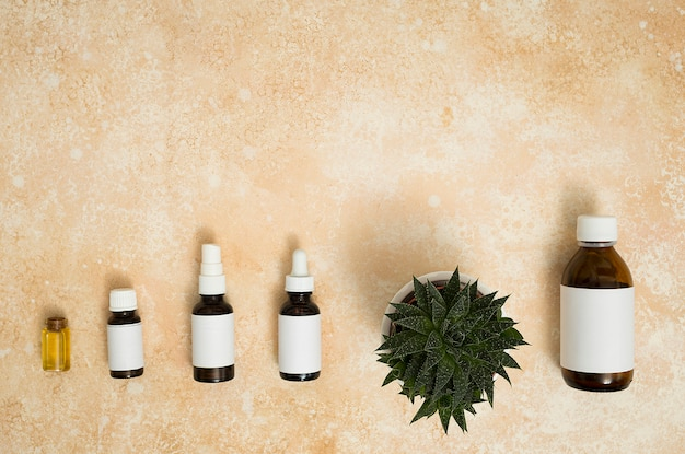 Different type of essential oil bottles with pot plant on textured background Free Photo