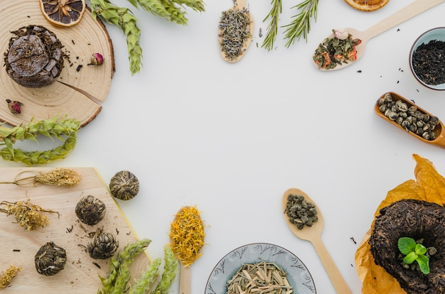 Different type of herbs isolated on white backdrop Free Photo