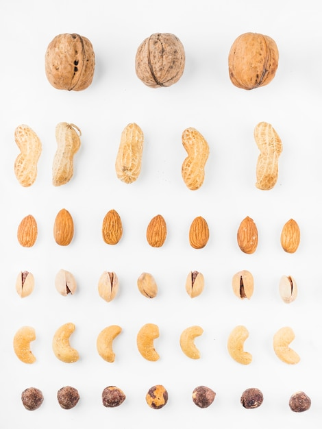 Different types of dried fruits on white backdrop Free Photo