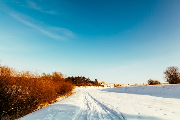 Diminishing perspective ski track on snowy landscape against blue sky Free Photo