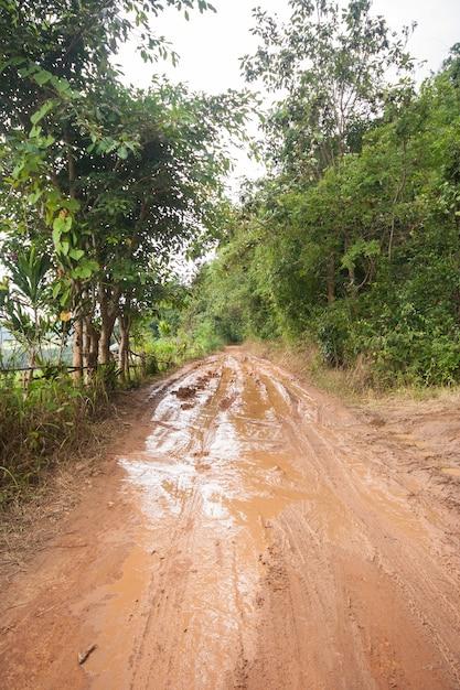 Dirt road in a rural area. Premium Photo