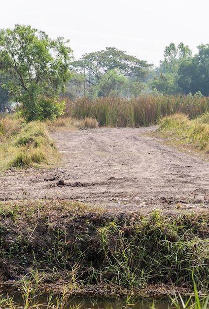 Dirt road through to the construction site. Premium Photo