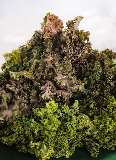 Display of fresh ripe organic kale at farmer's market Free Photo